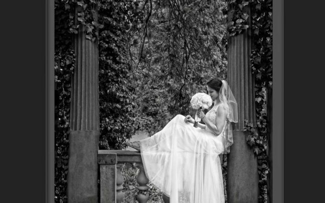 CT Wedding photography at Harkness Park wedding